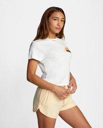 6 Dana Trippe Dana Hues Short Sleeve Tee White AVJZT00257 RVCA