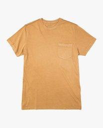 0 Ptc 2 Pigment T-Shirt  M3910PTC RVCA