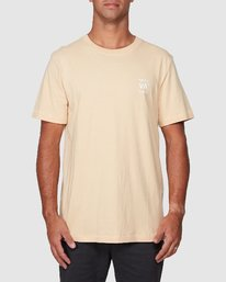 0 Boxed In Short Sleeve Tee  R107051 RVCA