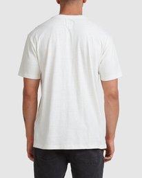 2 Hemp Natural Short Sleeve Tee Beige R317041 RVCA