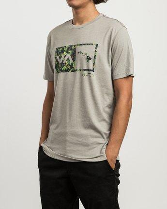 2 Squawker Islands Balance Box T-Shirt Multicolor M420SRSS RVCA