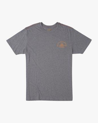 1 Risen T-Shirt Grey M420URRI RVCA