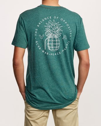 4 Pin Hawaii T-Shirt Grey M420VRPI RVCA