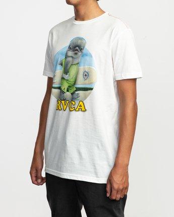 3 RVCA Platform Matt Gordon Surfin Dolphin T-Shirt White M422QRSD RVCA