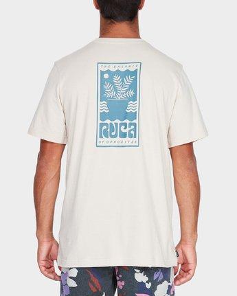 2 House Plant T-Shirt  R182049 RVCA