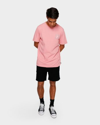 5 VA ALL THE WAYS MULTI TEE Pink R182062 RVCA