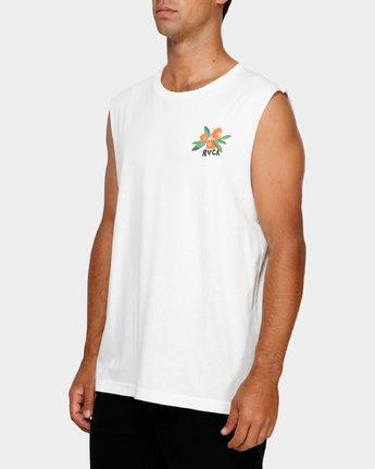 3 Jungle Muscle T-Shirt White R191013 RVCA