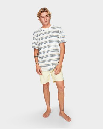 4 Southerly Stripe Short Sleeve T-Shirt White R192062 RVCA
