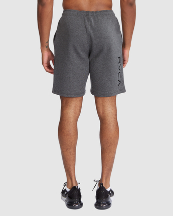 2 Sport Short IV Grey R305314 RVCA