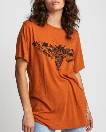 2 Luna Moth - T-Shirt for Women Orange U3SSRKRVF0 RVCA