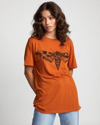 5 LUNA MOTH TEE Orange W4503RLM RVCA