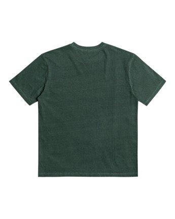 Pennant - T-Shirt for Men  Z1SSRYRVF1