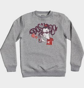 Karved - Sweatshirt for Boys 8-16  EDBSF03104