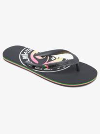 Molokai Pulse - Flip-Flops for Men  AQYL101103
