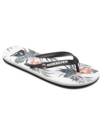 Molokai Everyday Paradise - Flip-Flops for Men  AQYL101188