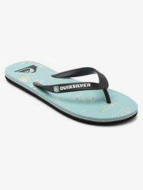 Molokai Island Breeze - Flip-Flops for Men  AQYL101203