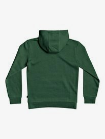 Big Logo - Hoodie for Boys 8-16  EQBFT03630