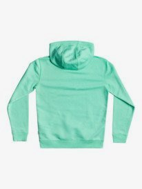 Big Logo - Hoodie for Boys 8-16  EQBFT03671