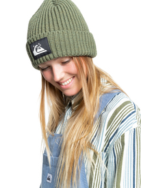 Quiksilver Womens The Beanie - Recycled Beanie for Women  EQWHA03021