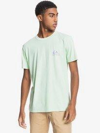 Mineral - Organic T-Shirt for Men  EQYKT04133