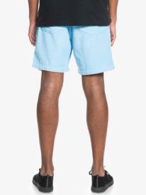 """Taxer 17"""" - Elasticated Shorts for Men  EQYWS03740"""