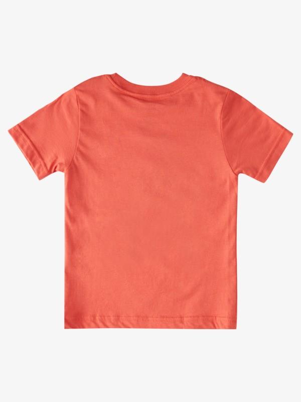 Stoked For Summer - T-Shirt for Boys 2-7  AQKZT03671