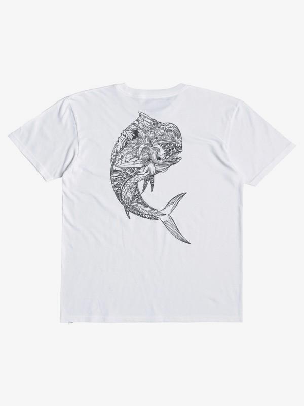 FISH AND TWIST QMT0  AQMZT03496