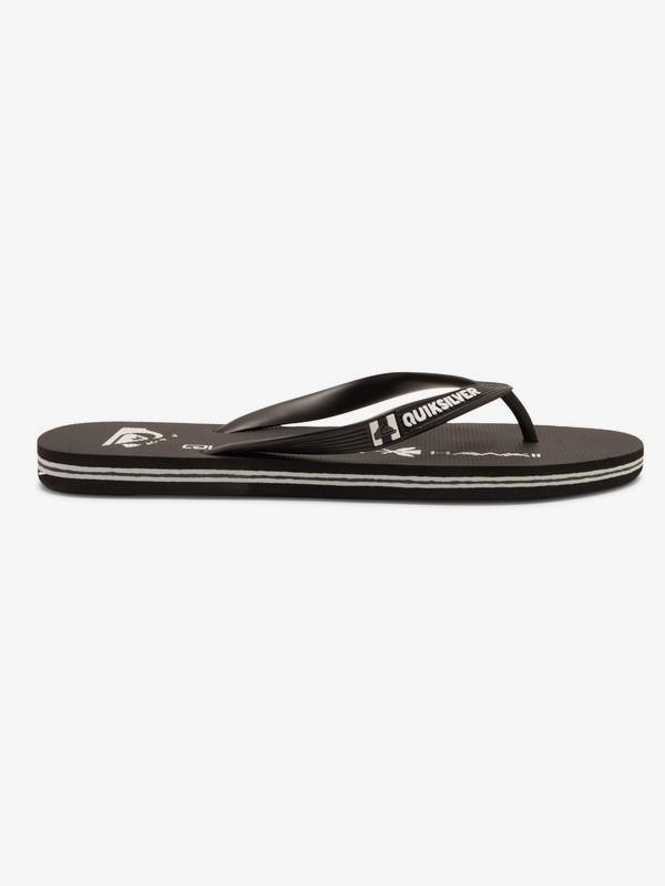 Molokai HI Homegrown - Flip-Flops for Men  AQYL101086