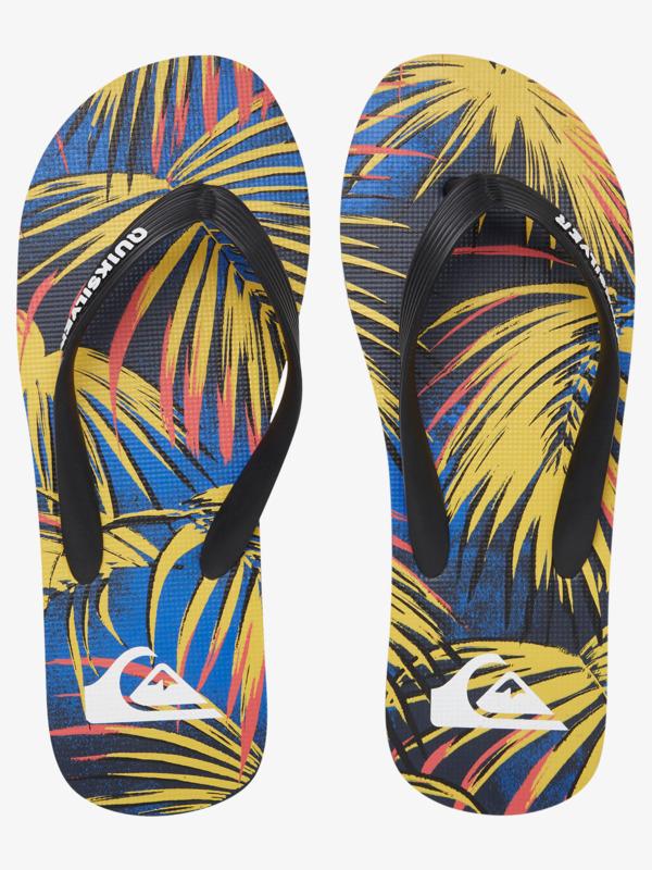 Molokai Sub Tropics - Flip-Flops for Men  AQYL101126