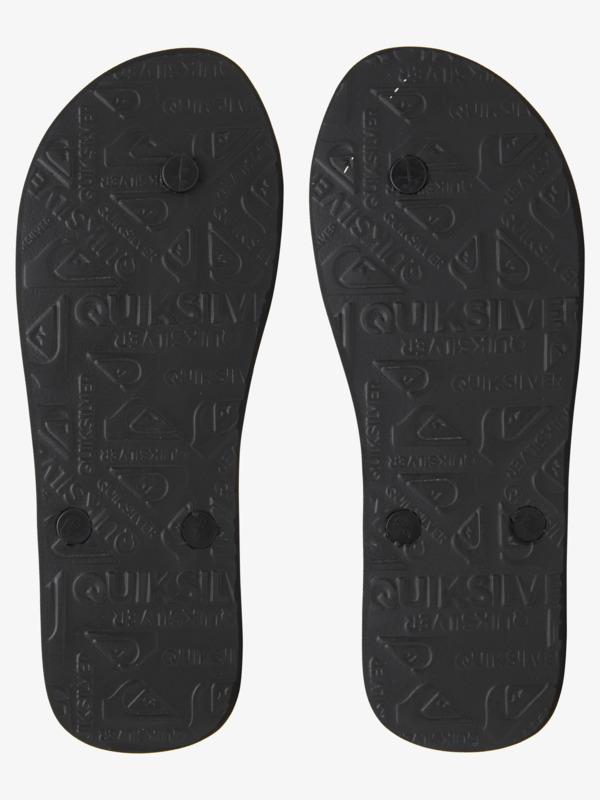Molokai Everyday Paradise - Flip-Flops for Men  AQYL101188