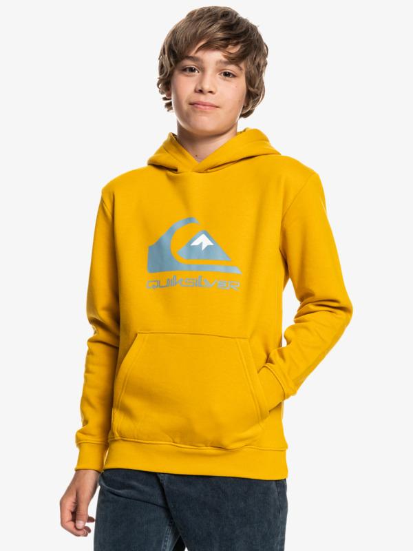 Big Logo - Hoodie for Boys  EQBFT03720