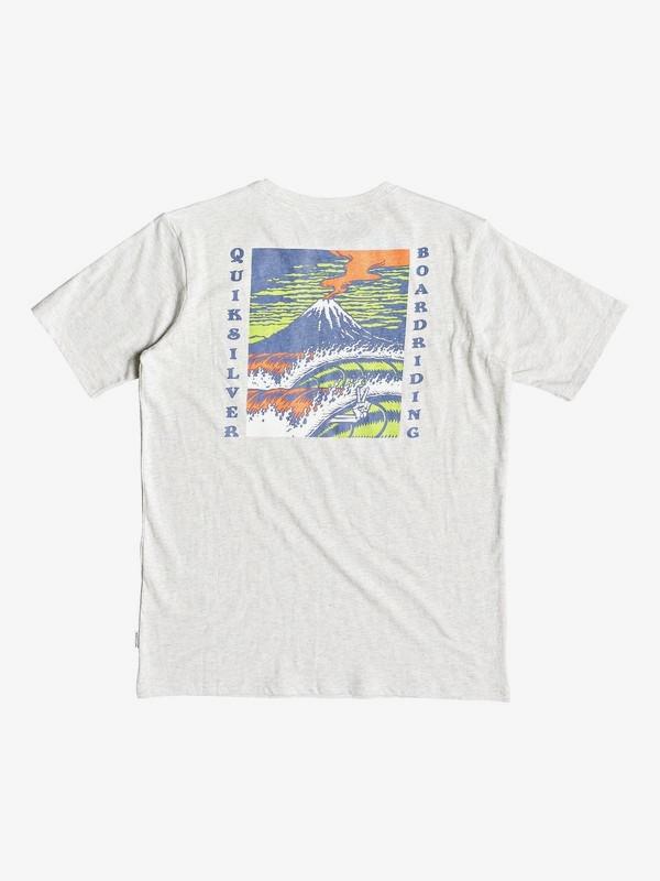 Tropic Eruption Heather - T-Shirt for Boys 8-16  EQBZT03766