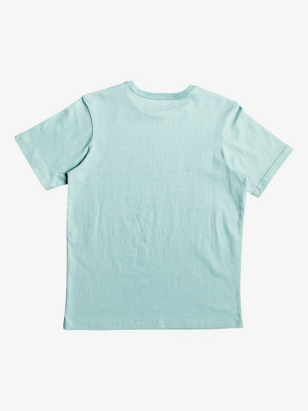 Get Buzzy - T-Shirt for Boys 8-16  EQBZT04008