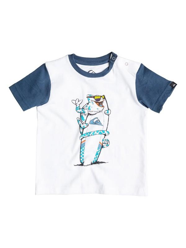 Colorblock Cameo - T-Shirt  EQIZT03017