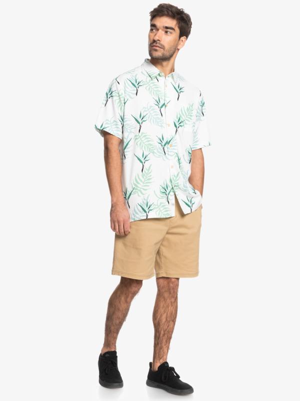Waterman Birds Around - Short Sleeve Shirt for Men  EQMWT03414