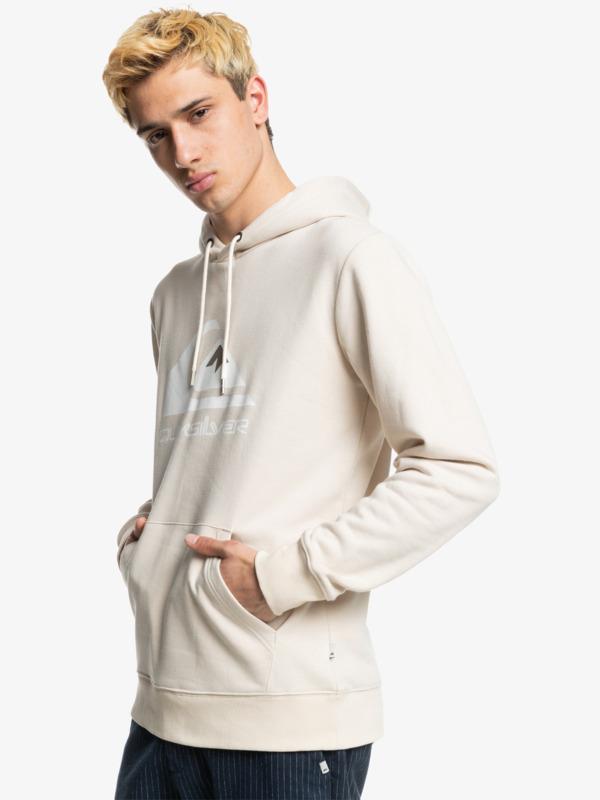 Big Logo - Fleece for Men  EQYFT04450