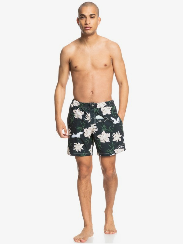 "Volley 17""- Swim Shorts for Men  EQYJV03811"