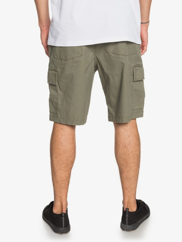 "New Cargo 20"" - Cargo Shorts  EQYWS03640"