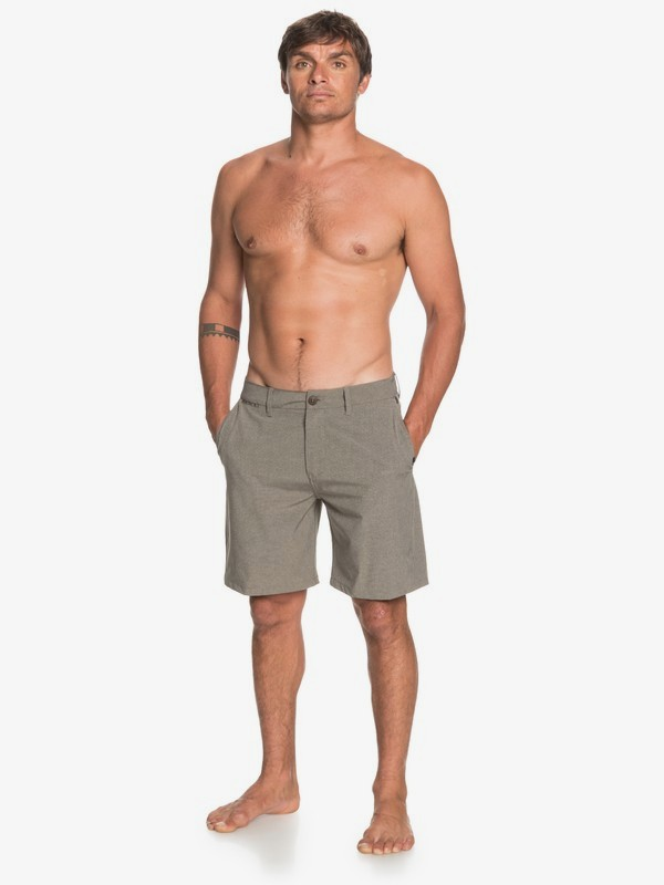 "Union Cloud 19"" - Amphibian Board Shorts for Men  EQYWS03688"
