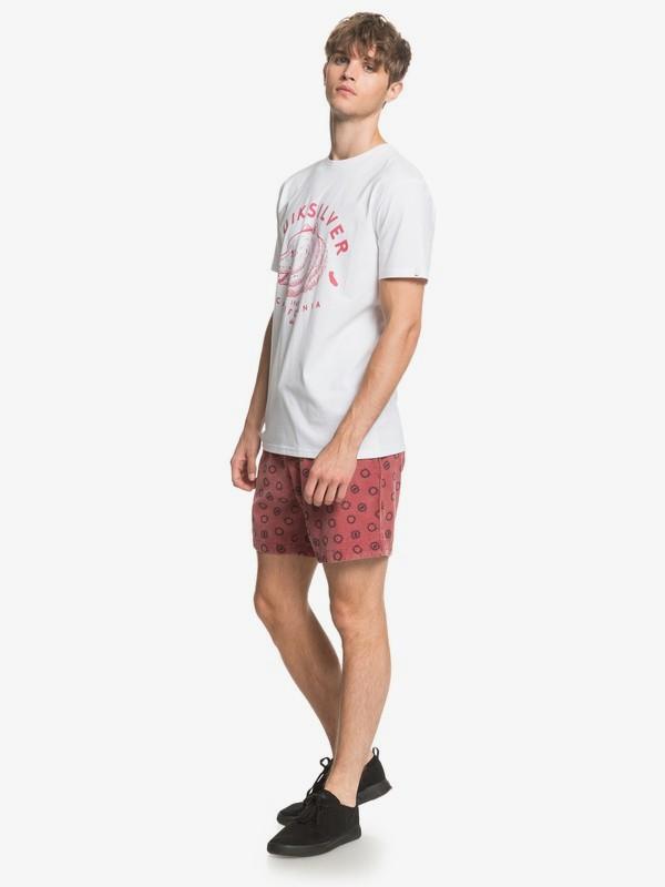 CA Brown Bear - T-Shirt  EQYZT05792