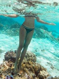Roxy Active - Mini Bikini Bottoms for Women  ERJX404244