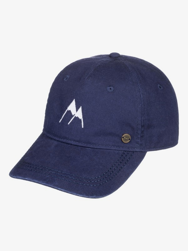 0 Next Level Baseball Hat Blue ERJHA03655 Roxy
